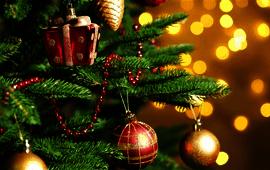 Christmas traditions poll