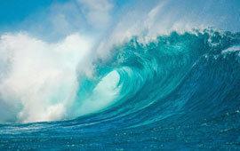 The ocean poll