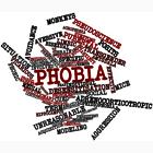 Phobia poll