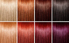 Hair colors poll
