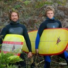 Poll surfingmovies