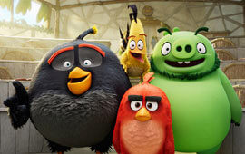 Angry birds character poll