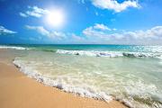 Quiz! Beach Trivia